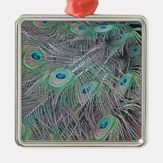 Federn eines Pfaus Silbernes Ornament