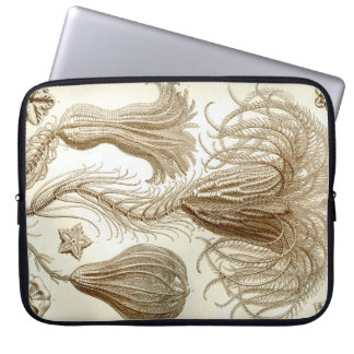 Federsterne Ernst Haeckels Crinoidea Laptopschutzhülle