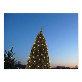 Feiertag der großer und wenig Weihnachtsbaum-I in Fotodruck