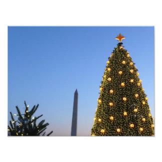 Feiertag der großer und wenig Weihnachtsbaum-II in Fotodruck