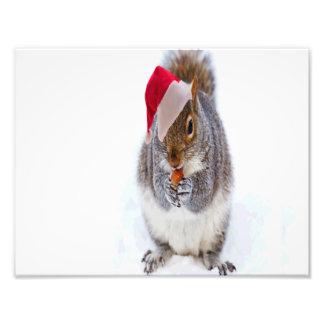 Feiertags-Eichhörnchen Kunst Foto