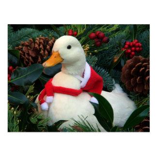 Feiertags-Ente Postkarten