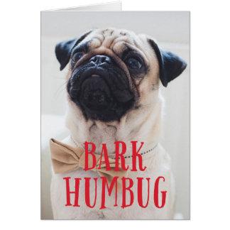Hunde Weihnachtskarten auf Zazzle Deutschland