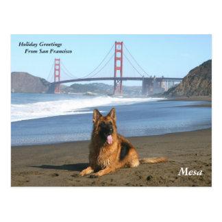 Feiertags-Grüße von San Francisco Postkarte