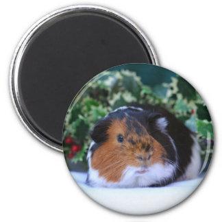 Feiertags-Meerschweinchen-Magnet Runder Magnet 5,7 Cm