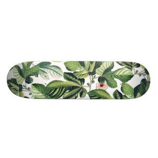 Feigen-Garten 20,1 Cm Skateboard Deck
