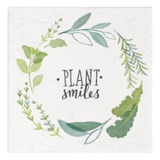 Feines Pflanzen-Lächeln der Kraut-II | Acryldruck
