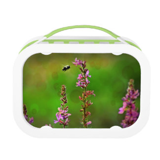 Felberich-WildblumenLunchbox der Bienen-N Brotdose