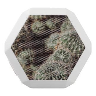 Feld der Kakteen, warme rote botanische Fotografie Weiße Bluetooth Lautsprecher