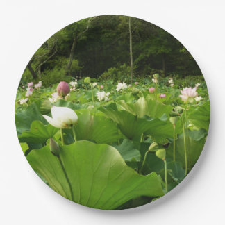 Feld der Lotos-Blumen Pappteller