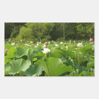 Feld der Lotos-Blumen Rechteckiger Aufkleber
