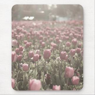 Feld der rosa Tulpen Mauspad