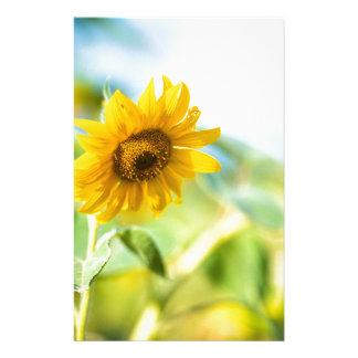 Feld der Sonnenblumen Briefpapier