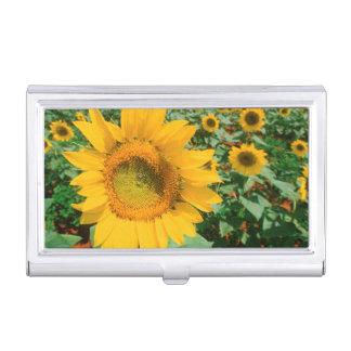 Feld der Sonnenblumen. Heidleberg Bezirk Visitenkarten Etui