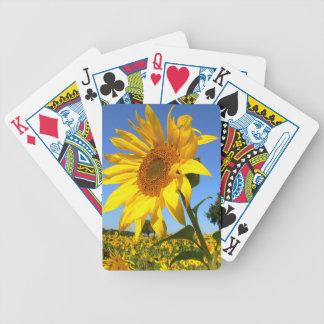 Feld der Sonnenblumen, Sonnenblume Bicycle Spielkarten