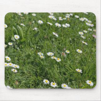 Feld des grünen Grases mit den weißen und gelben Mousepad