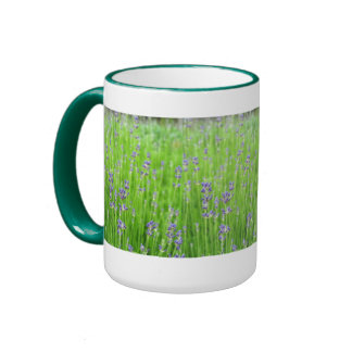 Feld des Lavendels Ringer Tasse