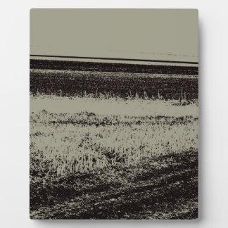 Feld in s/w fotoplatte