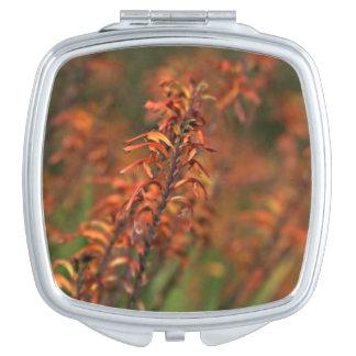 Felder der orange Agave Taschenspiegel