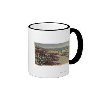 Felder des Wüsten-Sonnenscheins u. der wilden Verb Teetassen