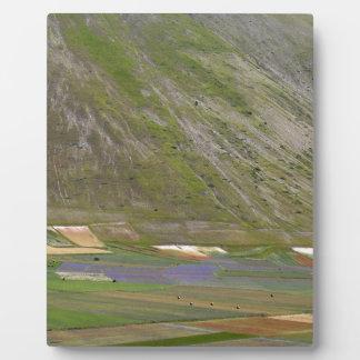 Felder in den Sibellini Bergen in Italien Fotoplatte