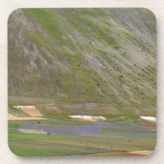 Felder in den Sibellini Bergen in Italien Getränkeuntersetzer