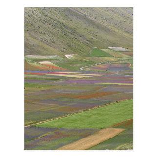 Felder in den Sibellini Bergen in Italien Postkarte