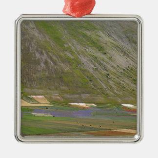 Felder in den Sibellini Bergen in Italien Quadratisches Silberfarbenes Ornament