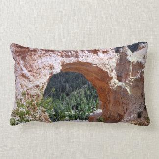 Felsen-Bogen-Schlucht-Wüste Utahs rote südöstlich Lendenkissen