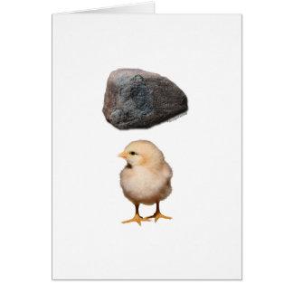 Felsen + Küken Mitteilungskarte