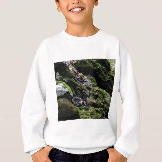 Felsen und Moos Sweatshirt