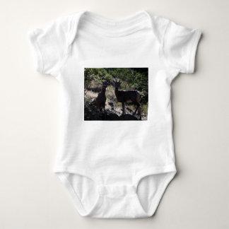 Felsiger GebirgsBighorn-Schafe Baby Strampler