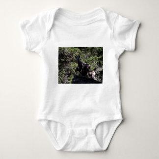 Felsiger GebirgsBighorn-Schafe, Keremeos, BC Baby Strampler