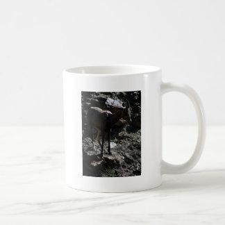 Felsiger GebirgsBighorn-Schafe, Mutterschaf Kaffeetasse