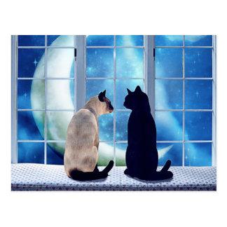 Fenster-Katzen Postkarte