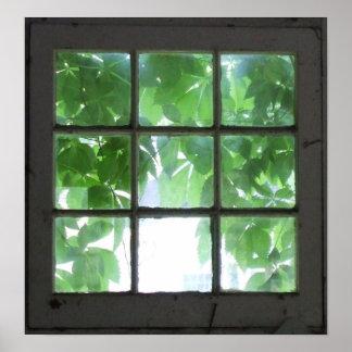 Fenster Poster