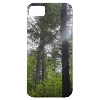 Fenster-zu-d-Überdachungkevin-humphrey iPhone 5 Case
