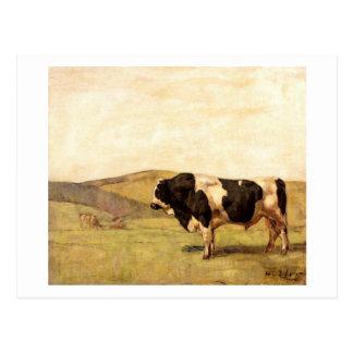 Ferdinand Hodler - Stier in einer Weide Postkarte