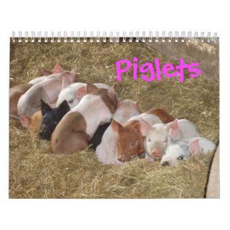 Ferkel-Kalender Abreißkalender