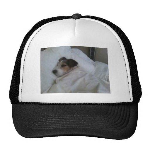 Fernlastfahrer-Hut Baseball Cap