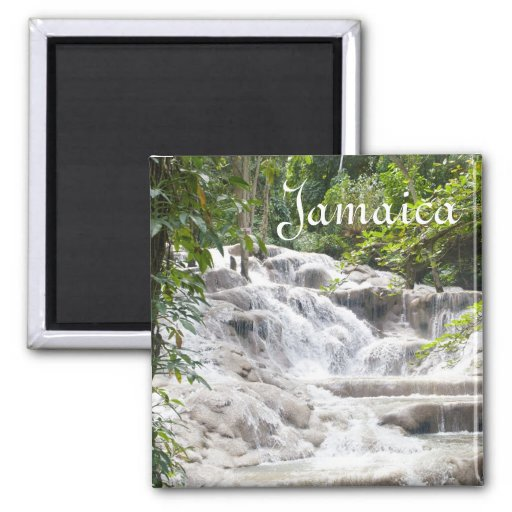 Fertigen Sie Dunns Fluss-Fall-Foto besonders an Kühlschrankmagnet