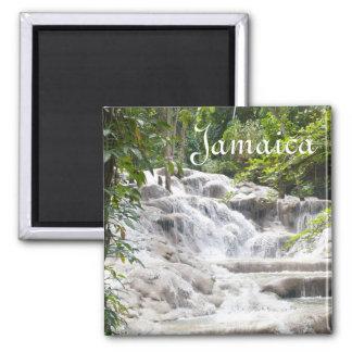 Fertigen Sie Dunns Fluss-Fall-Foto besonders an Quadratischer Magnet