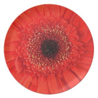 Feuer-Blume Teller