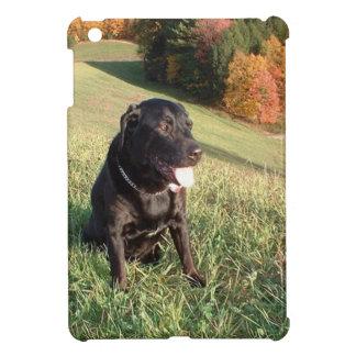 Feuerstein-Hund iPad Mini Hülle
