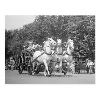 Feuerwehr Horses, 1925 Postkarte