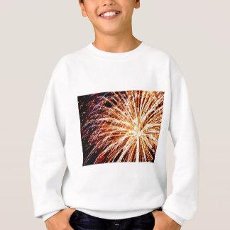 Feuerwerke 7 sweatshirt