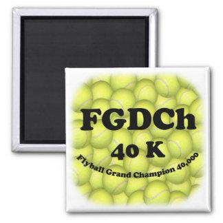 FGDCh 40K, Flyball Vorlagenchampion Quadratischer Magnet