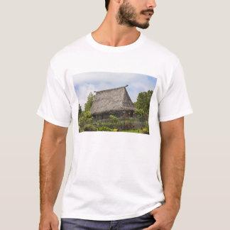 Fidschi, Viti Levu Insel. Polynesisches T-Shirt
