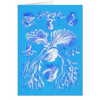 Filicinae auf blauem Hintergrund Grußkarte