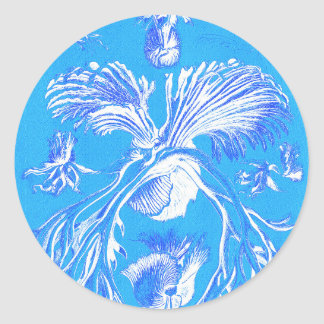 Filicinae auf blauem Hintergrund Runder Aufkleber